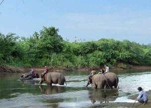 kanchanaburi trekking