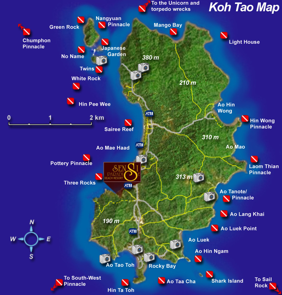 Diving thailand association des guides francophone de thailande ttn thailand travel news - Dive in koh tao ...